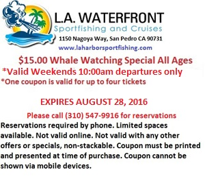 Whale Watching Coupon